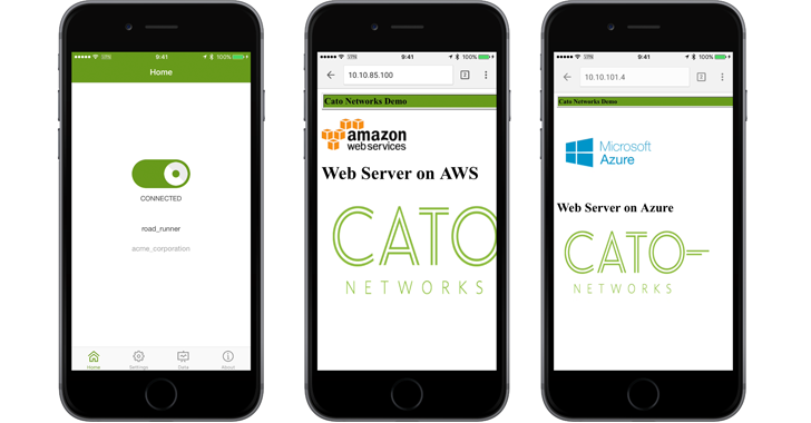 Figure 12: Cato client for iOS connects the user to all resources with a single VPN connection
