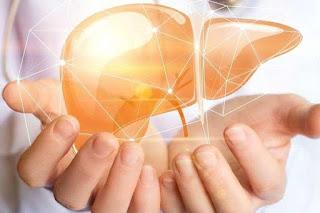 أنواع سرطان الكبد: