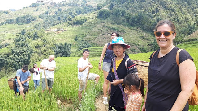 [Family Holiday] Ripe Rice Season In Sapa Makes A Great Family Destination 1