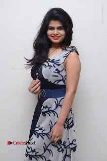 Telugu Actress Alekhya Stills in Blue Long Dress at Plus One ( 1) Audio Launch  0015.jpg