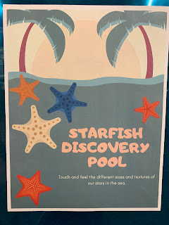 Starfish Discovery Pool sign with image of starfish in water at the beach