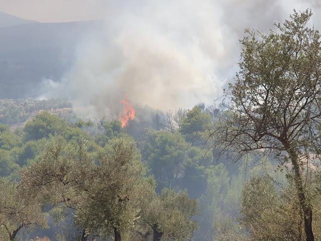 Έργα 3.250.000 ευρώ εκτιμά η Περιφέρεια ότι απαιτούνται στην πυρόπληκτη περιοχή της Κορινθίας