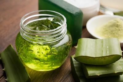 aloe veranın saça faydaları nelerdir ? Aloe veranın saça etkileri nelerdir ? Aloe vera saç çıkartır mı ? Aloe veranın saça yararı nedir ?