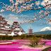 Quốc Hoa của Nhật Bản và 1 số nước đông nam Á