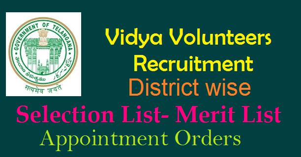 TS Vidya Volunteers (VV'S) District Wise, Mandal wise