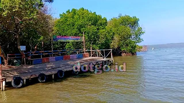 Wisata Pantai Cirewang Subang tempat wisata pantai indah dan alami dengan hutan bakau mangrove