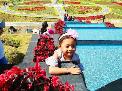 Nadia Diva sari blooms garden