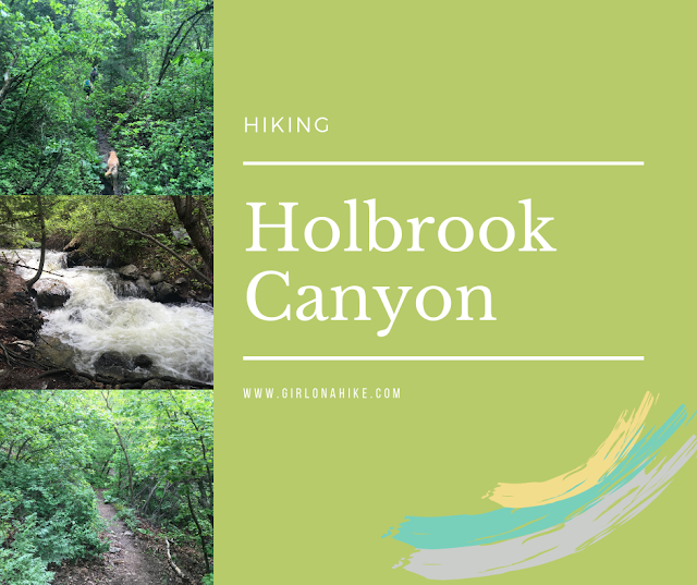 Hiking Holbrook Canyon