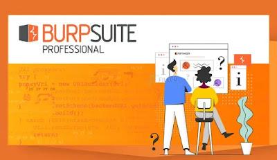 Burp Suite Professional 2020.12.1