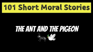 The ant And The Pigeon - Short Moral Stories in English
