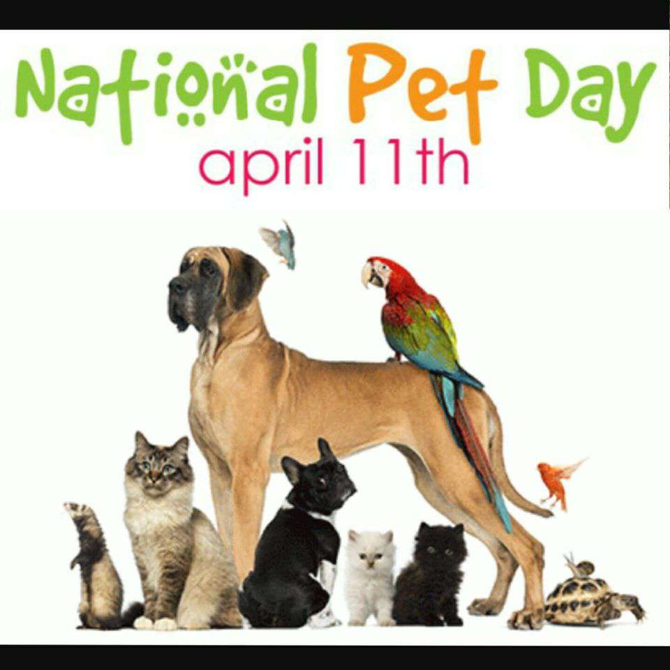 National Pet Day Wishes pics free download