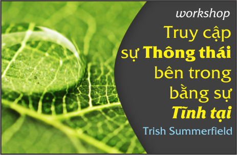WORKSHOP-TRUY-CAP-SU-THONG-THAI-BEN-TRONG-BANG-SU-TINH-TAI-DIEN-GIA-TRISH-SUMMERFIELD