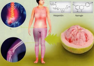 naringin dan hesperidin