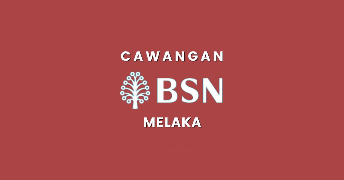 Cawangan BSN Melaka