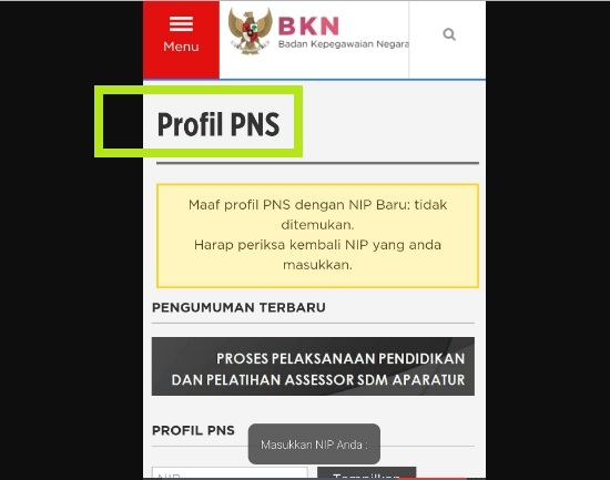 Cek Profil PNS BKN Menggunakan Aplikasi Cek NIP Profil PNS 2