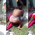 Woman Attacks Rival In Public Over Man In Lagos, Strips Her Naked
