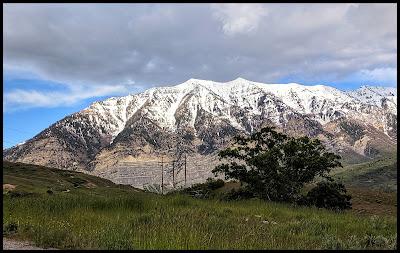 Cascade Mountain view along Bonneville Shoreline Trail