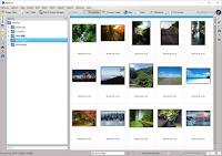 blog.fujiu.jp digiKam パソコン内の画像ファイルを簡単に探せるフリーソフト