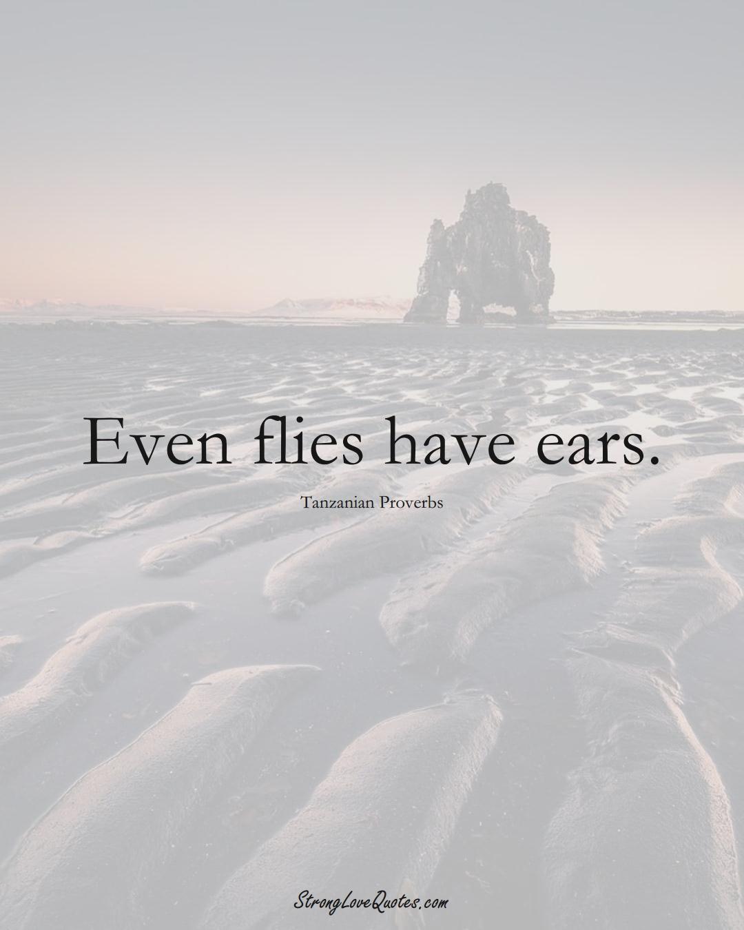 Even flies have ears. (Tanzanian Sayings);  #AfricanSayings