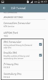 Setting DNS di aplikasi KPN Tunnel