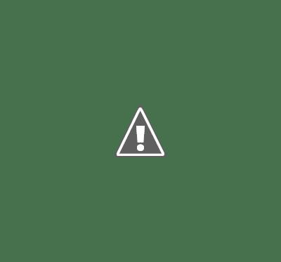 legionnaires disease causes
