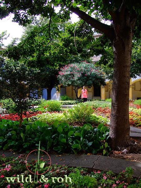 Tine Taufrisch Spuren Von Van Gogh Im Garten Auf Der Suche Nach Ruhe