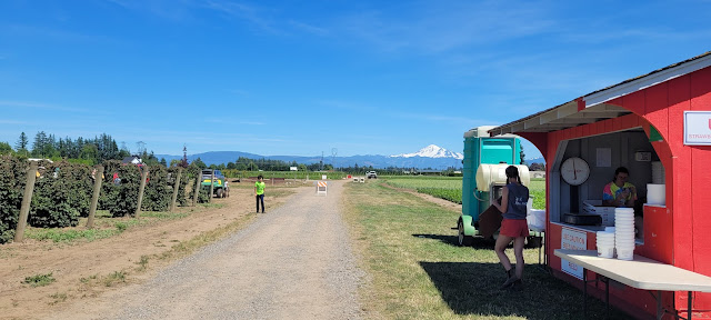 Nice view of Mt. Baker and the U-Pick Farm Booth
