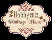 Winner at Hobbycutz
