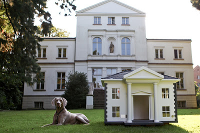 Cool and Creative Dog Mansions (15) 3