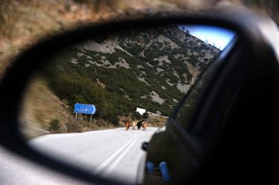 Εγκαταλελειμμένη και ερημωμένη η περιοχή της παλαιάς εθνικής οδού Ηγουμενίτσας-Ιωαννίνων