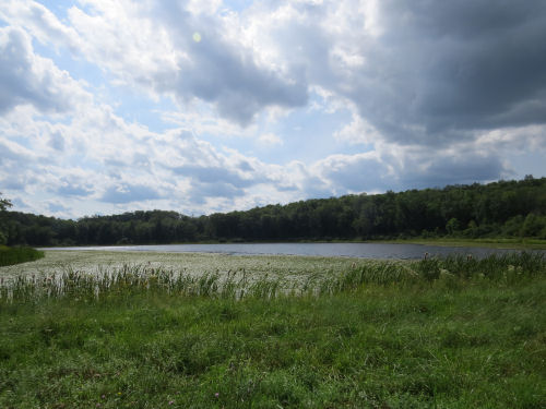Levi Pond