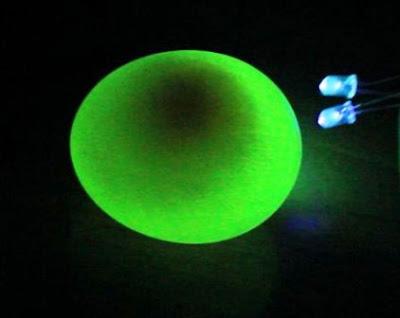 cara membuat bola lampu dari telur