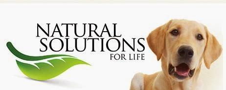 Natural Stride joint supplement for dogs