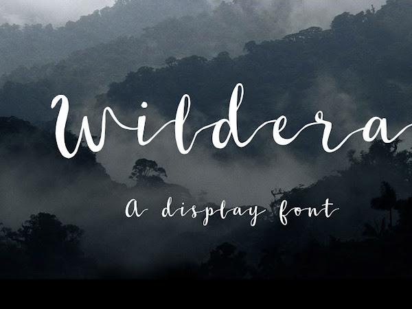 Wildera Brush Script Font Free Download