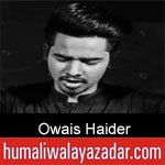 https://www.humaliwalayazadar.com/2019/09/owais-haider-nohay-2020.html