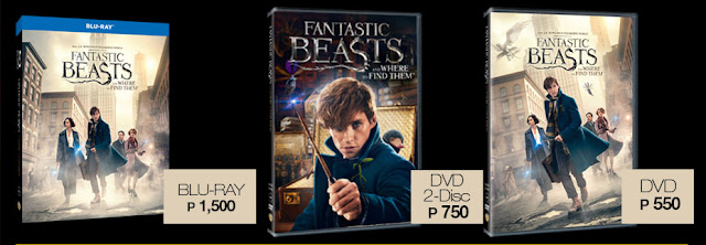 Fantastic Beasts and Where to Find Them Bluray DVD Release