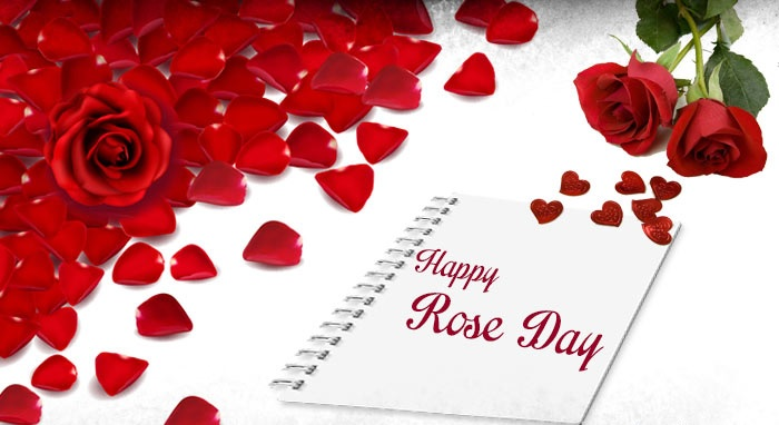 rose day images for hubby