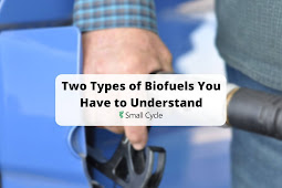 Two Types of Biofuels You Have to Understand