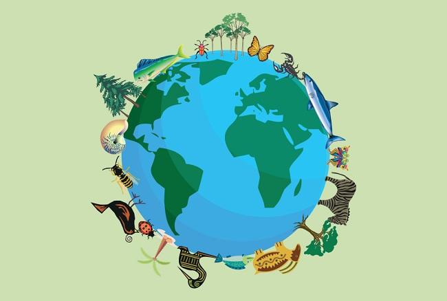 Hakikat Biologi dan Keanekaragaman Hayati