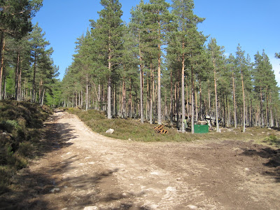 Forest track junction, Creagan Riabhach, Deeside
