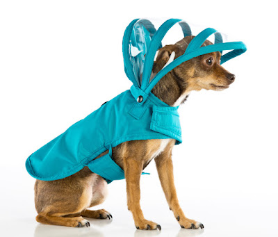 Rainbow Collection Dog Raincoat- Teal