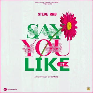AUDIO | STEVE RNB – SAY YOU LIKE IT | Download