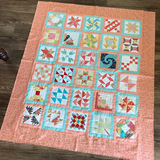 Prairie Point Quilt Along designed by Susan of Prairie Point Quilt & Fabric Shop