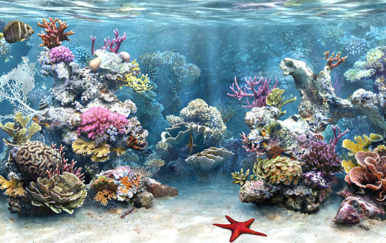 pic new posts: Aquarium Wallpaper 3d