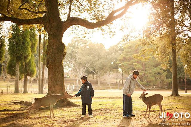 奈良公園で家族の記念撮影