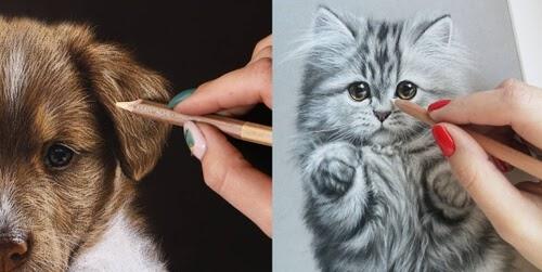 00-Animal-Drawing-Julia-Dubinina-www-designstack-co
