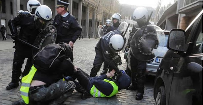 Yellow vest' protester dies after being hit by truck