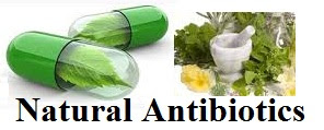 Natural Antibiotics for Infection- Know More!