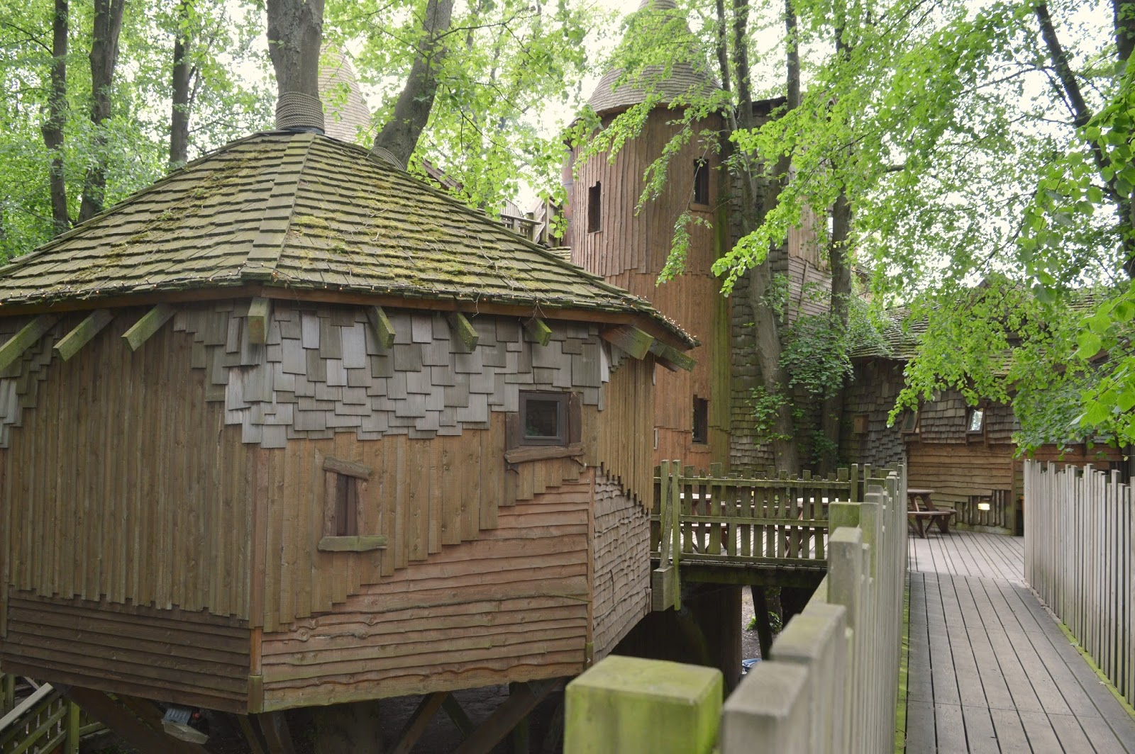 North East Staycation: Alnwick Garden | New Girl in Toon