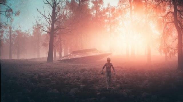 Người ngoài hành tinh Grey: Chuyên gia bắt cóc, mục đích tới Trái Đất chưa rõ ràng